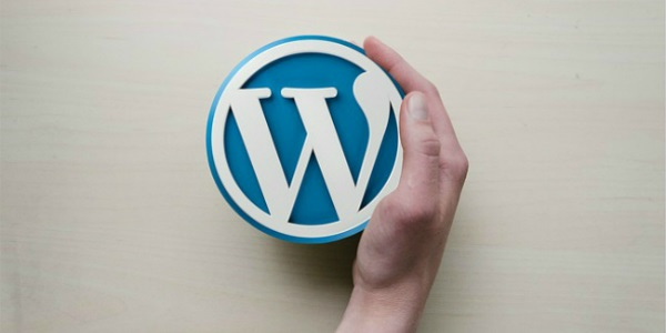 Wordpress speed page pro